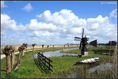 Polder landscape