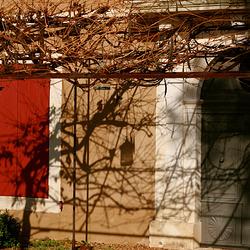 Bagard : En attendant le printemps.