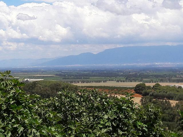 Plaine de la Mitidja au loin les montagnes de Chréa Algérie
