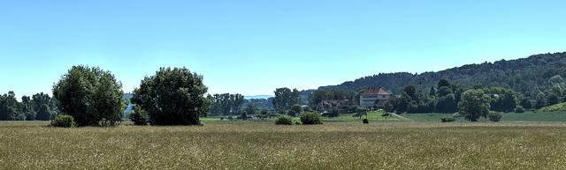 Blick zur Domäne Ammerhof