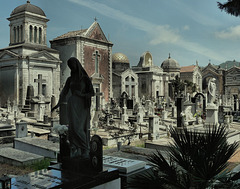 Cimitero. Linguaglossa(3)