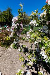 170420 Biere jardin 2