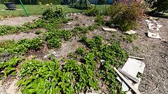 170420 Biere jardin 3