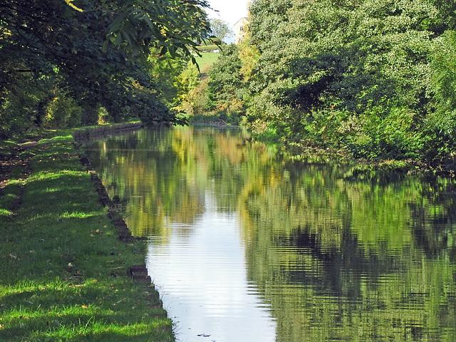 An autumunal reflection