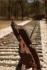The Railway to 'Nowhere'... (III)