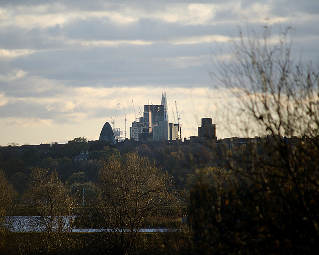 City of London from Walthamstow Wetlands