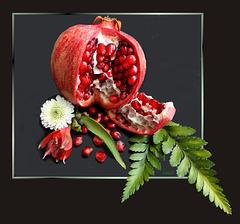 Granatapfel (Punica granatum). ©UdoSm