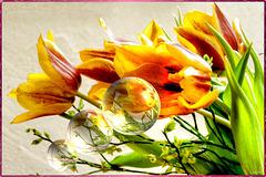 Fragrance flows out... ©UdoSm