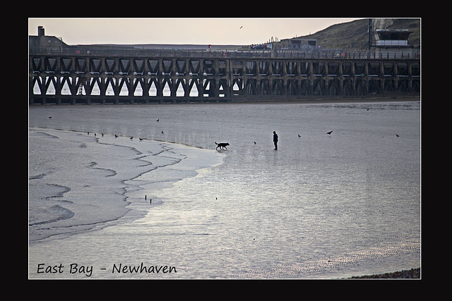One man & his dog - East Bay - Newhaven - 21.3.2016