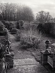 Garden - Again