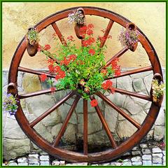Bousson : Antica ruota fiorita - (907)