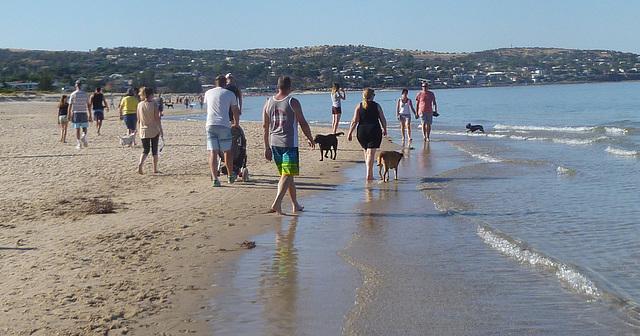 Brighton beach walkers, summer sunday