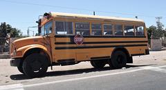 Bus scolaire et  couronnée / Autobús escolar y coronado