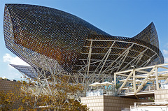 The Gehry-Fish (PiP)