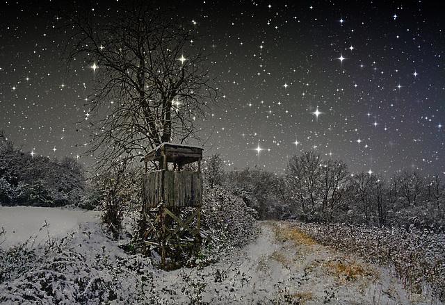 Mein Winternachtstraum - My winter night's dream - PiP