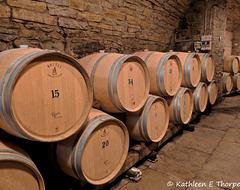 Before the Glass, the Casks!!  Savignola Paolina Winery, Greve in Chianti Tuscany