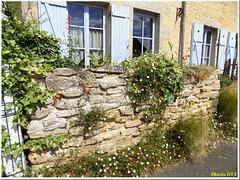Stone wall in summer dress