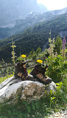 Bergheil  für die Bergfexen u. Gipfelstürmer !
