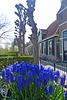 Nederland - Kolhorn