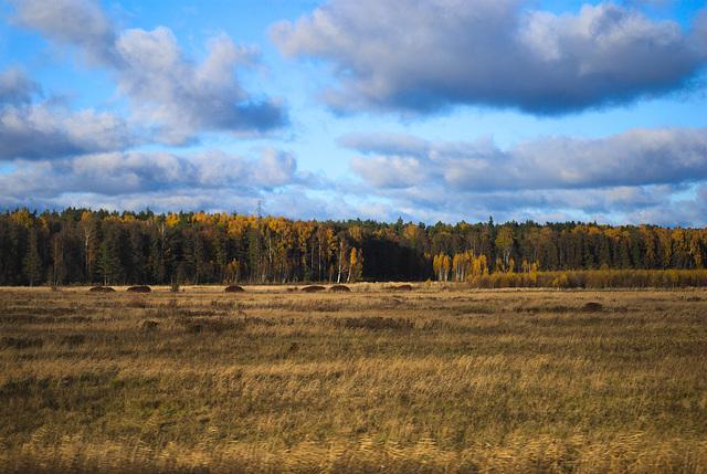 Landschaft bei Jūrmala