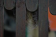 Ein nebeliger Herbsttag - A foggy autumn day - HFF