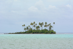 Polynésie Française, Islet on the Reef of Taha'a Atoll