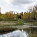 Votier's Flats, Fish Creek Park