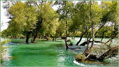 Turchia : siamo al 'Parco delle rapide' - Manavgat Salalesi -