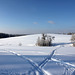 Spuren im Schnee Blickrichtung Nord -  (PicinPic)