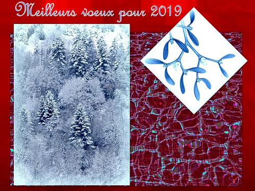 Une belle année à tous les ipernitiens , happy new year