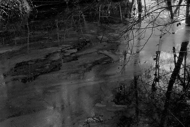 Lacustre / Lakeside
