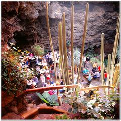 Jameos del agua   Höhle