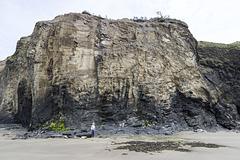 Druidston Haven: Cliff Section 5