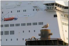 """""""Wenn ein Schiff vorüberfährt ....."""""""