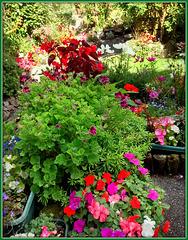 Saint Day Garden