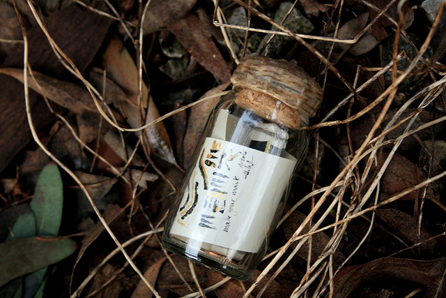 Message in a Bottle No. 83