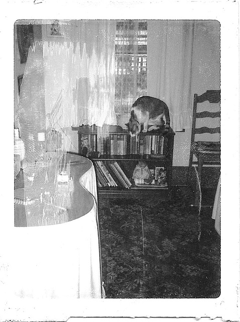 My Bedroom, Early 1969 #2