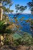 Chain Bay view