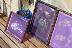 Screens drying in the sun