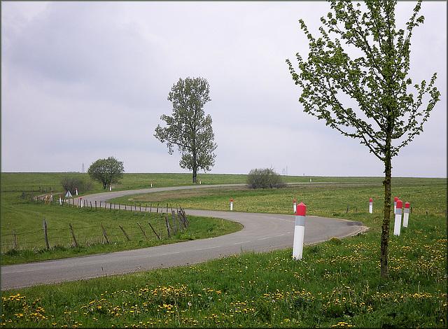 La Rivière-Drugeon (25) 3 mai 2011.