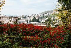 El Albaicín desde la Alhambra