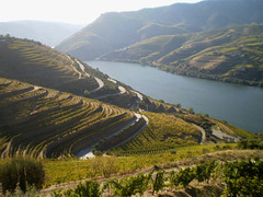 Towering view over Douro River.