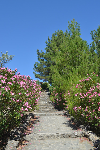 Rhodes, Stairs Leading to the Monastery of Kalopetras