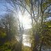 Herbstmorgen an der Elbe - aŭtuna mateno en Elbvalo