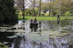 Nettoyage du plan d'eau envahi par les algues au jardin des plantes Chateauroux