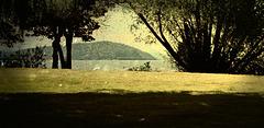 Buck Island