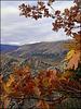 Autumn in the Sierra