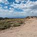 A New Mexico landscape10