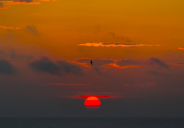 anochecer sobre el mar