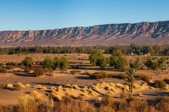Wadi Draa